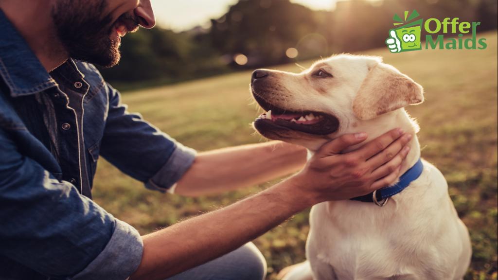 Pet Care Service Dubai